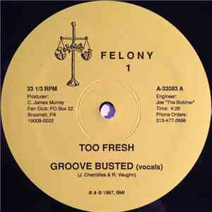 Too Fresh - Groove Busted download flac