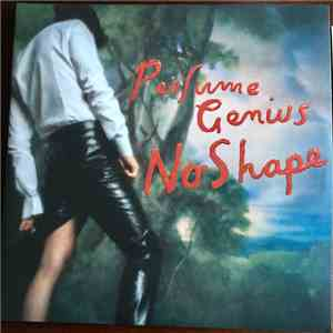 Perfume Genius - No Shape download flac
