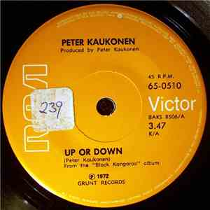 Peter Kaukonen - Up Or Down download flac